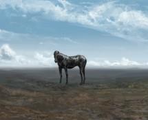 horseform_v002